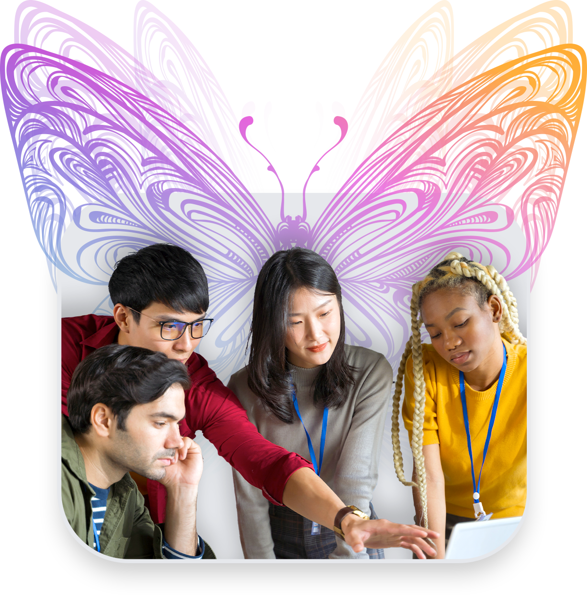 butterfly-group